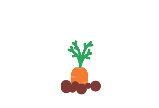 carrot-before