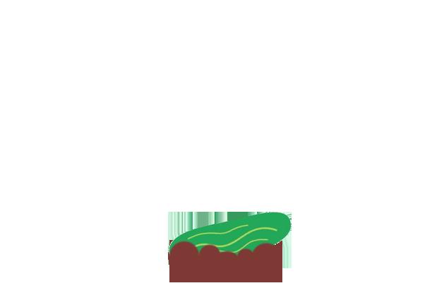 cucumber-before
