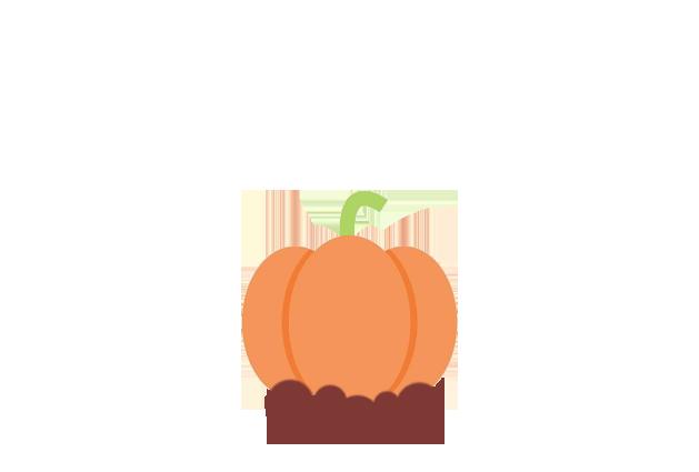 pumpkin-before