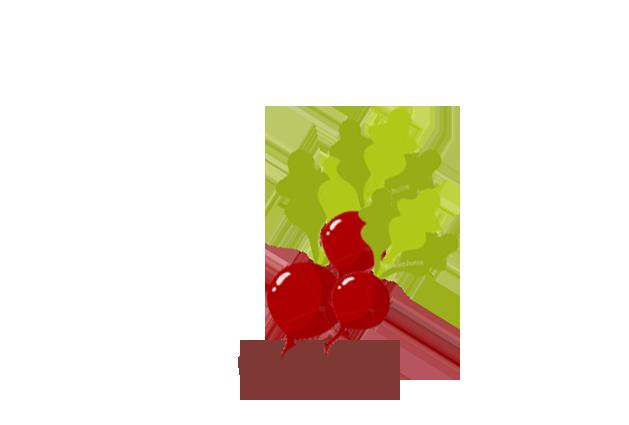 radish-after